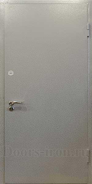 Серебряная антивандальная металлическая дверь