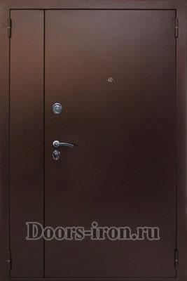Дверь двустворчатая с порошковым окрасом