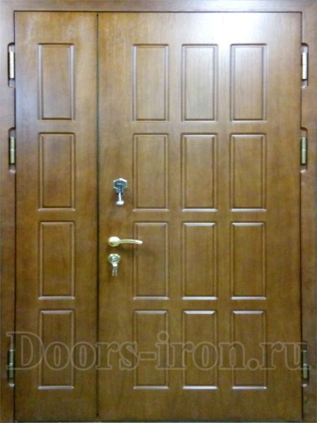 Двустворчатая дверь оливкового цвета
