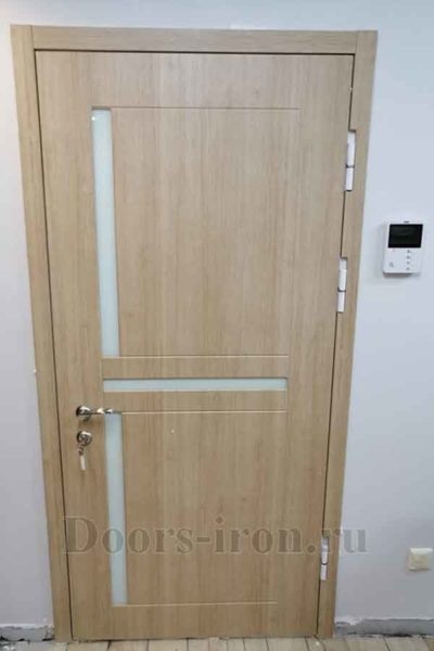 Металлическая дверь со стеклянными вставками