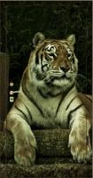 Фотопанель животные №1