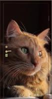 Фотопанель животные №5